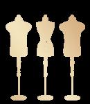 logo2 transparent