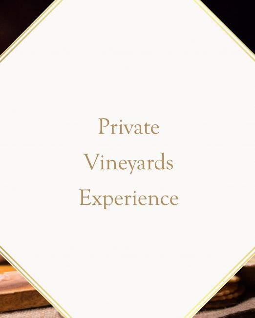 Private Vineyards Experience in Tuscany