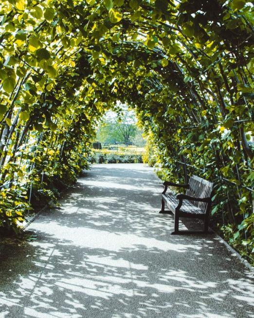 Florentine Gardens Private Aperitivo. Photography credit Jyrki Sorjonen plant arch in private garden florence, italy